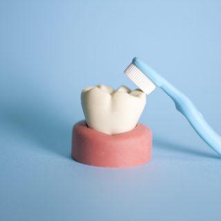 放置するのは絶対にNG!歯が欠けたときの対処法3選