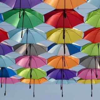 雨で濡れた後はしっかり乾燥!傘の正しい乾かし方のコツ4選